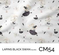 CM54.jpg
