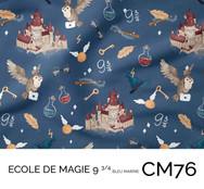 CM76.jpg