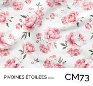 CM73.jpg