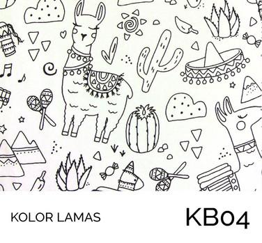 KB04.jpg