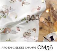 CM56.jpg