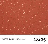 CG25.jpg
