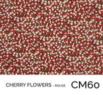 CM60.jpg