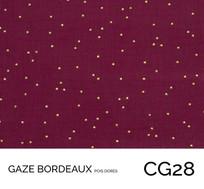 CG28.jpg