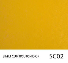 SC02.jpg