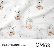 CM53.jpg