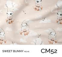 CM52.jpg