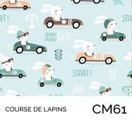 CM61.jpg