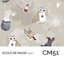 CM51.jpg