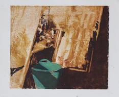 Garden I, Monotype, Ink on Paper, 29x25c
