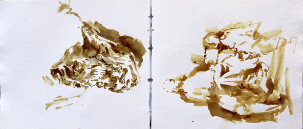 Sketchbook Pignano, Sienna
