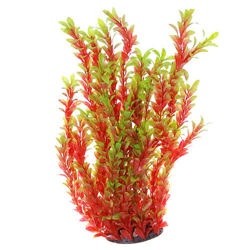 "Underwater Treasures 20"" Red Ludwigia Aquarium Plant"
