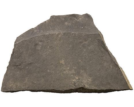 Estes' Aquarium Slate Rock