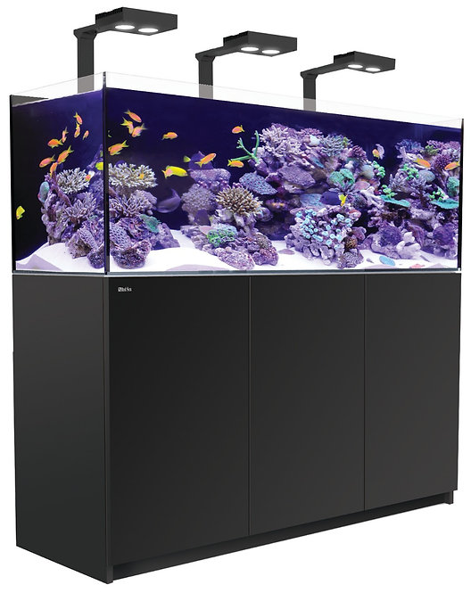 Red Sea Reefer Deluxe Concept 450 System 116 Gallons Black