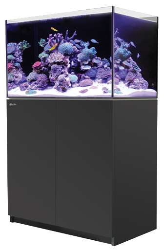 Red Sea REEFER 250 Black 65 Gallons