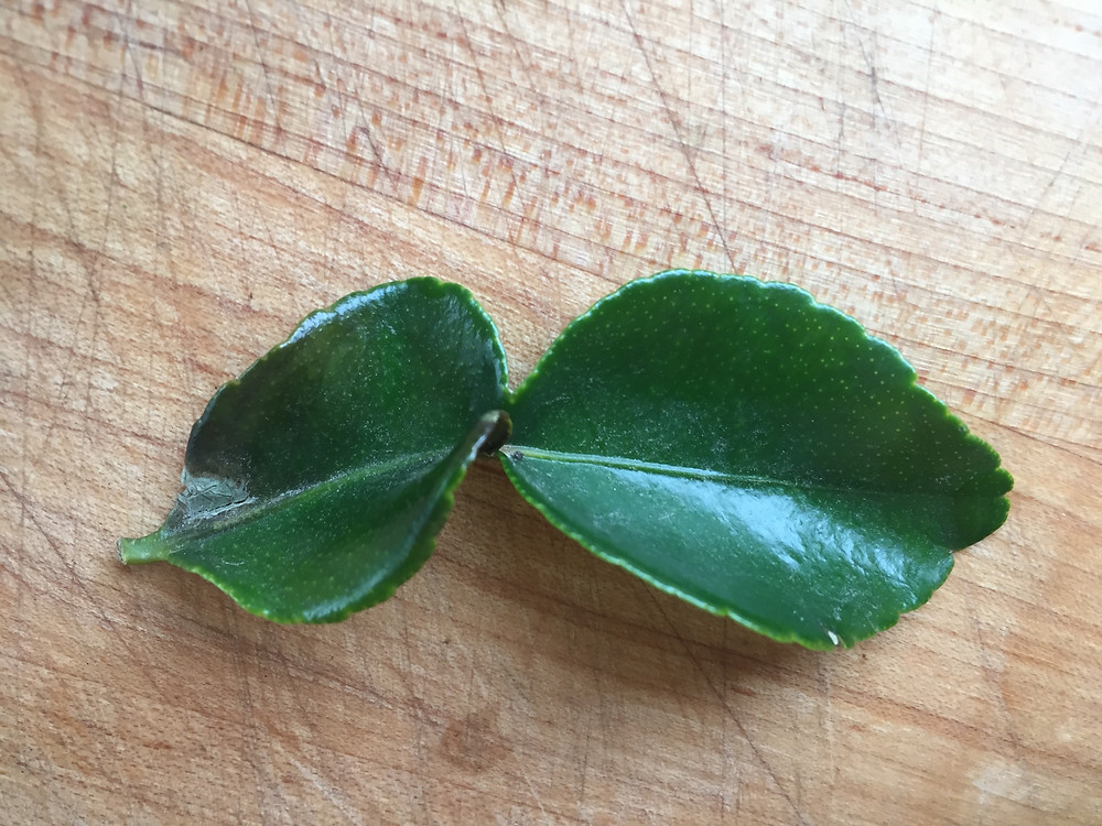 """Lime leaves are known for their """"twin leaf"""" shape."""
