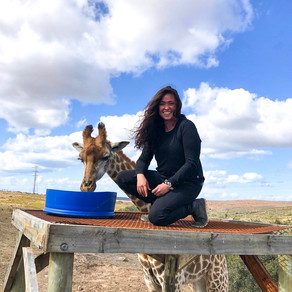 Wildlife Medicine + Conservation