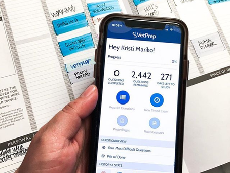 VetPrep Mobile App Unleashed