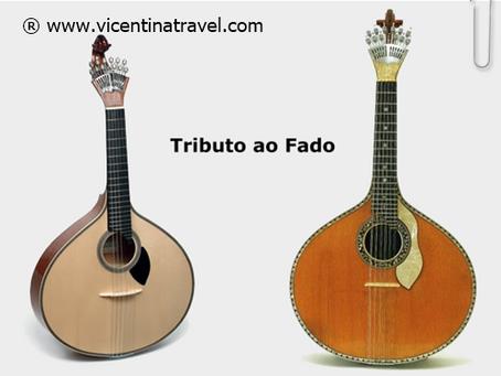 Portuguese guitar - Vicentina Travel Experiences