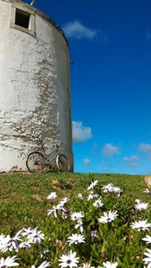 When using our help to book your self-guided holidays along Rota Vicentina, we will use our local knowledge to book accommodations like this one along the Historical way with two imponent a beautiful windmills. More info at www.vicentinatravel.com .
