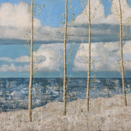 Angus Collis: resurgence of images from beloved rural / seascape NZ