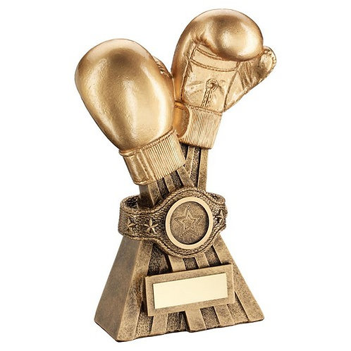 Boxing Gloves With Belt Trophy - 178 mm