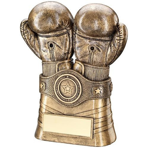 Boxing Gloves And Belt Trophy - 203 mm