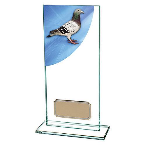 Colour Curve Pigeon Jade Glass Award - 180mm