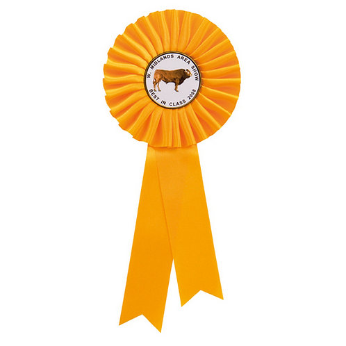 Champion Rosette Yellow - 255mm