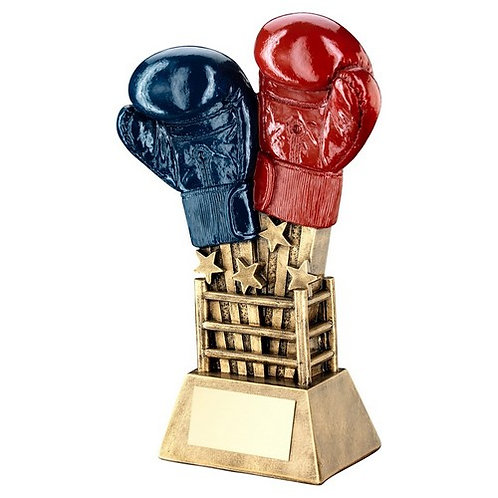 Boxing Gloves Star Burst With Ring Base Trophy - 165 mm