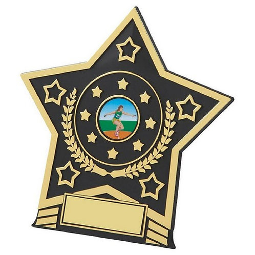 Black Plastic Star Award - 140mm