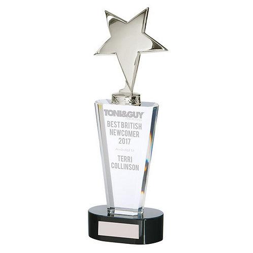 Chicago Crystal & Chrome Award - 270mm
