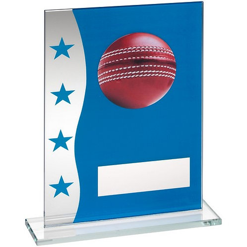 Blue/Silver Printed Glass Plaque With Cricket Ball Image Trophy - 203 mm