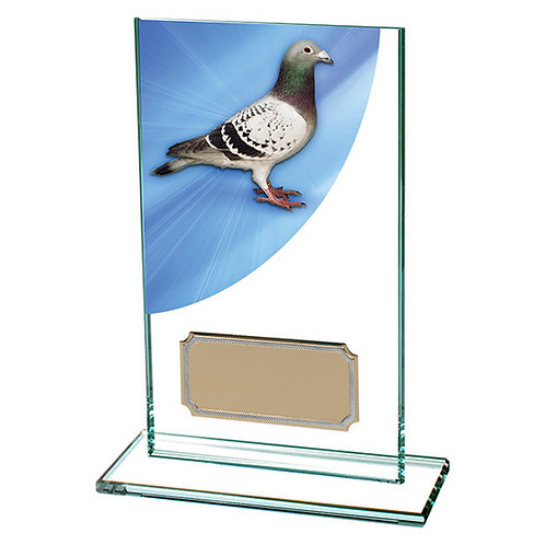 Colour Curve Pigeon Jade Glass Award - 140mm