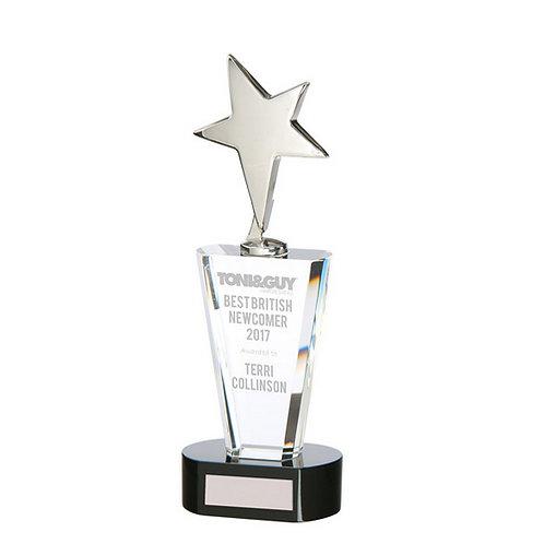 Chicago Crystal & Chrome Award - 250mm