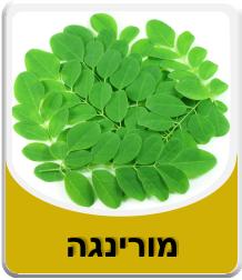 Moringa leaves 100 grams