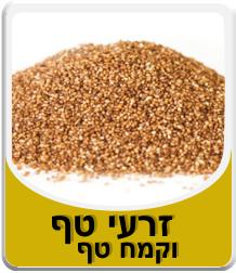 Teff seeds - and teff flour 500 grams