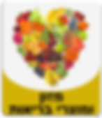 מזון ומוצרי בריאות.png