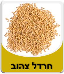 זרעי חרדל צהוב