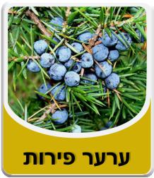 Juniper Fruit 50 grams