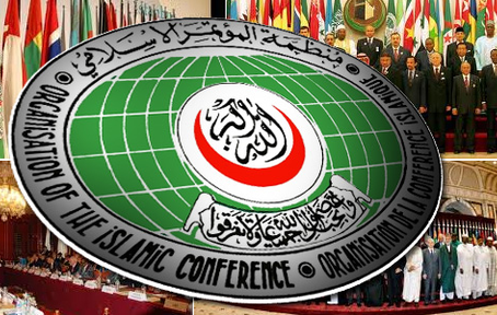 OIC Condemns Military Brutality On Rohingyas
