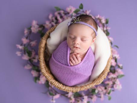 Grace 10 days new | Newborn session Moncton