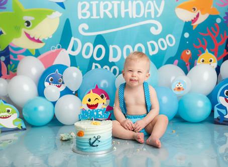Baby Shark | Moncton cake smash sessions