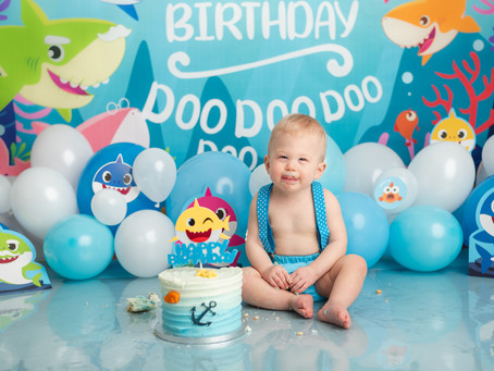 Baby Shark | Moncton cake smash sessions