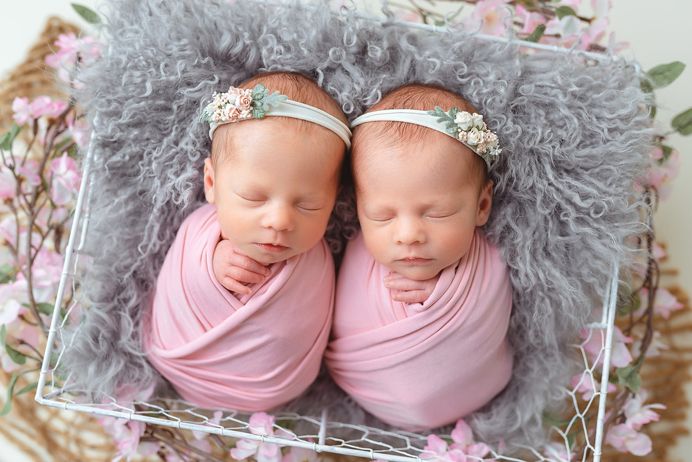 Newborn twins identical girls session babies photographer Moncton Canada studio Irina Art Photography