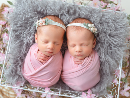 Twins Lillie-Rose and Lexie-Mae - 12 days new | Moncton/ Atlantic Canada newborn photographer