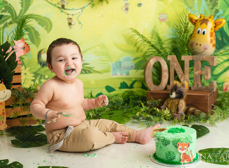 We're going wild for Adit's Jungle Cake Smash | Moncton baby photographer