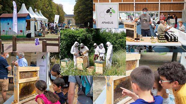 sensibilisation collectivités ruches apiculteur apiculture apimelis