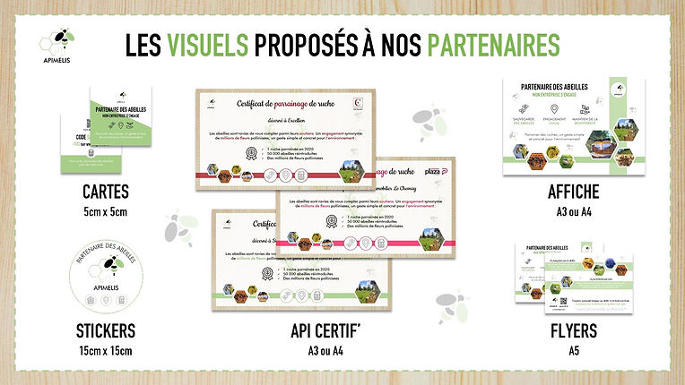 sensibilisation et animation entreprises visuels kit communication abeille apiculture apimelis miel local