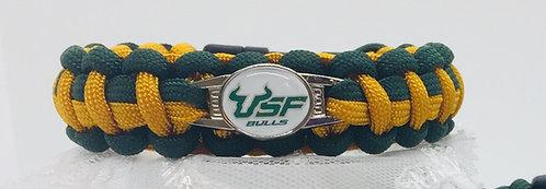 USF- University of South Florida